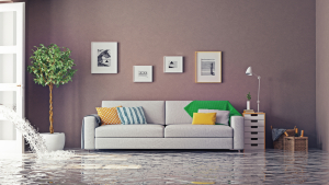 "ALT=""sofa in flooded living room; home alone, Insurance Problem Solver"""
